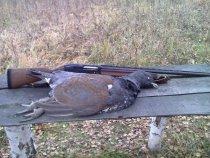 "Охотничий натюрморт: ""Глухарь с ружьём.""    :-)))"