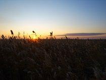 Восход на оз Канкуль
