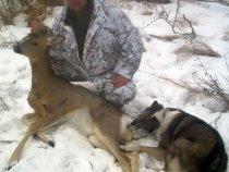 Логическое завершение охоты