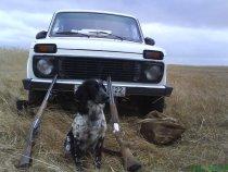 Мой охотник Алтай!