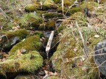Алтайский водопровод