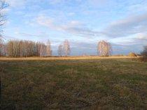 Эх поля...