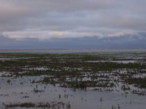 Убинское озеро утро 1мая.