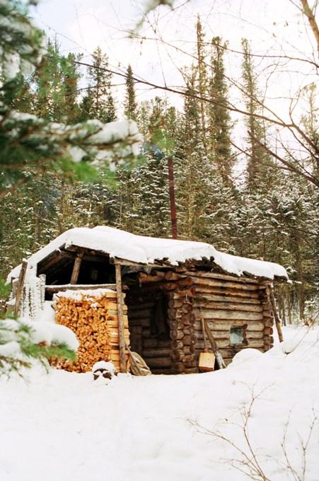 Пусть борода моя седа, зимы мне нечего бояться, ведь есть в поленнице дрова, мои дрова - мое богатство!:)