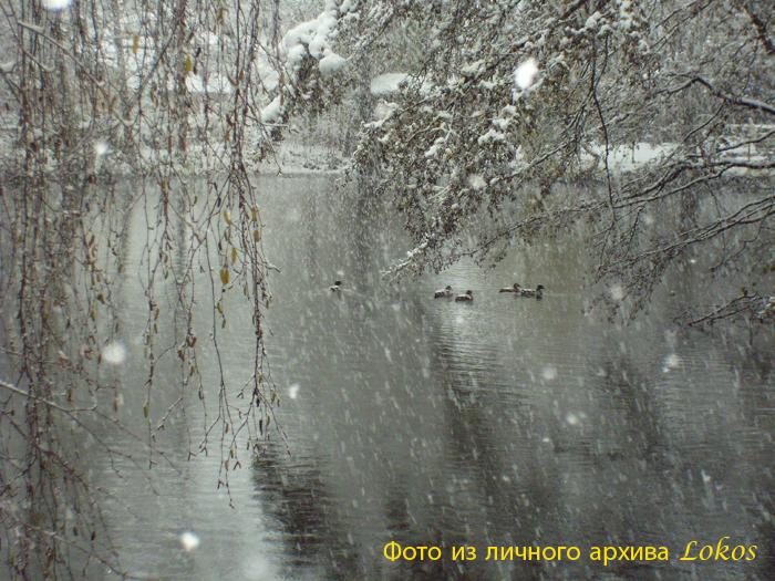 Снег кружится летает,летает....