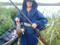 Приучаю к охоте