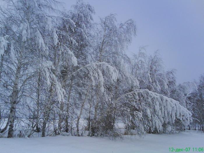 Зимняя сказка....