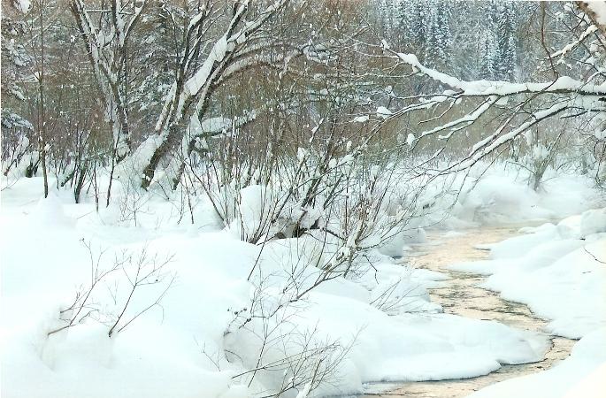 зимняя речка.