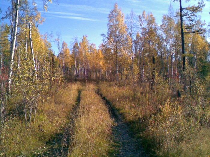 октябрь уж наступил