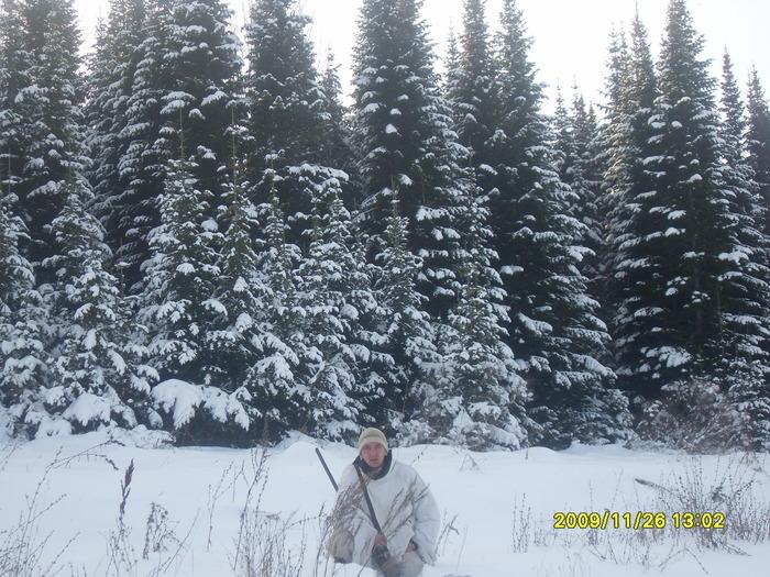 Зимой тайга необыкновенно красива!