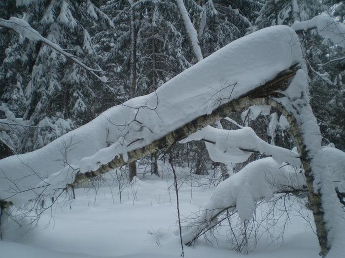 много снега много