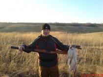 Ну очень крупный заяц !!!