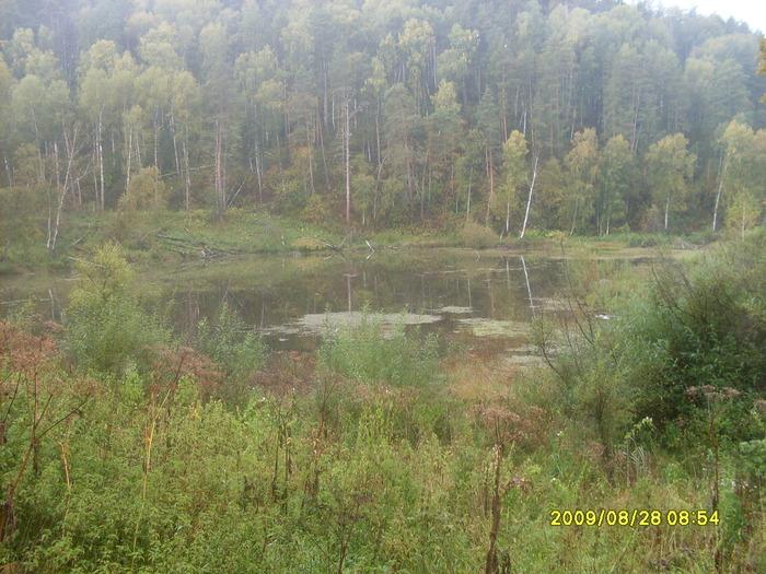 Наше любимое озеро Малахово!