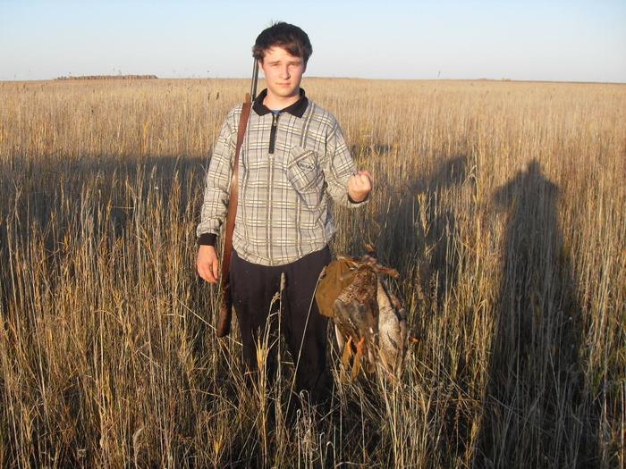 Вовка вылез из болота