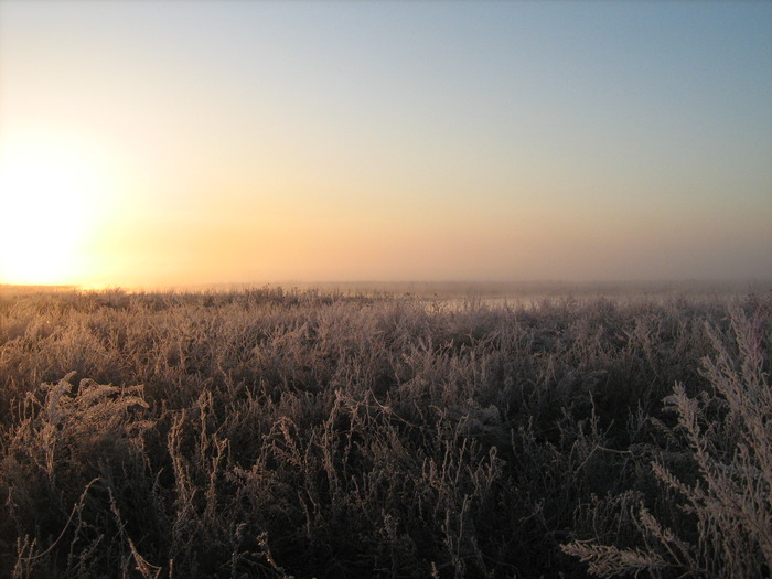 Морозное утро. В ожидании, Весна 2010!