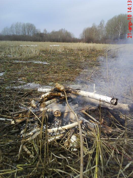 Первая вылазка на природу после зимы