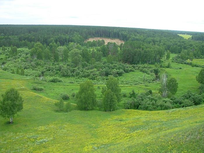 р.Каракан с Сузунских холмов.