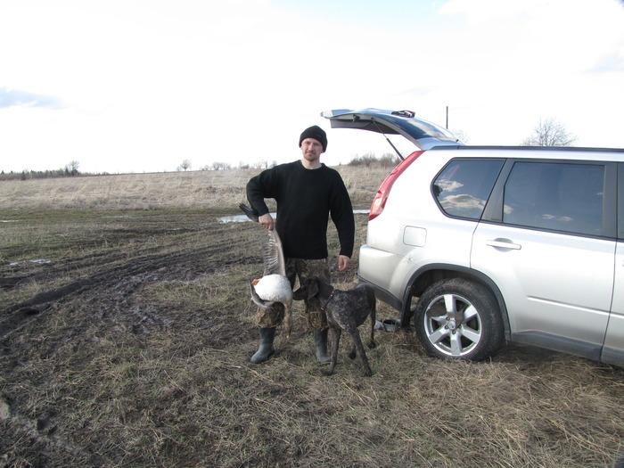 Гуменник (Вологда 2010)