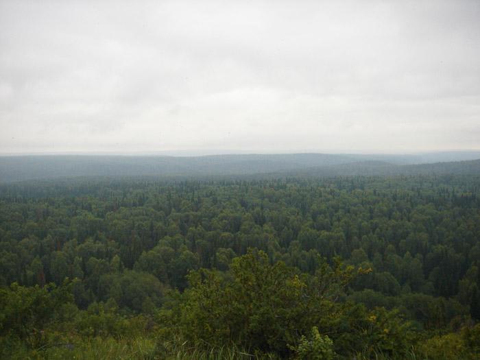 Вид с Пихтового гребня 2