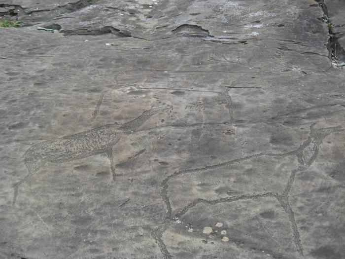 На них охотились наши далекие предки (наскальные рисунки в горах Алтая)