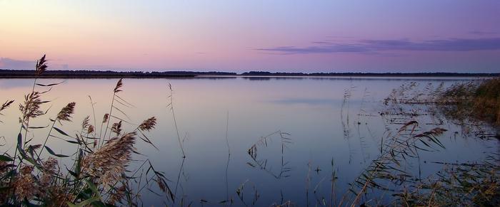 Панорама оз.Гогол (Чановский р-он)