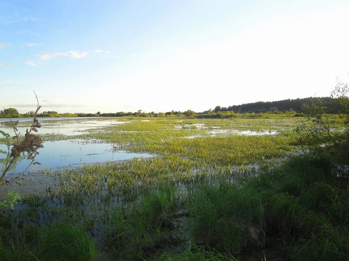 Прекрасное озеро, незабываемая охота