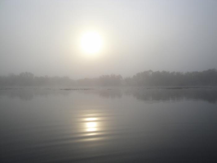 Вот вам и туман