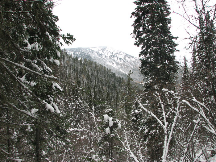 6 Октября в Хакасии выпал снег!!