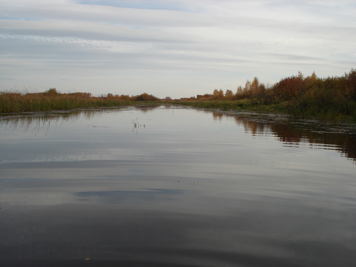 Лывина, недалеко от Мерети, Сузунский район