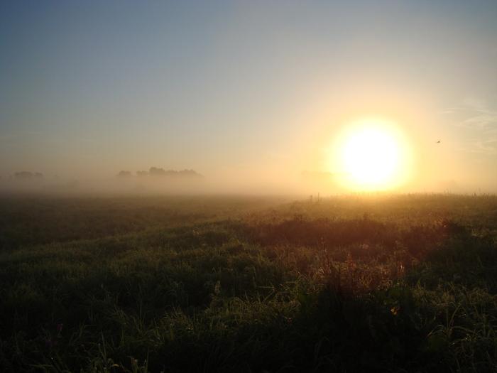Восход в пойме р. Оби