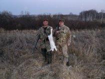 охота 30.10.10.  один заяц за весь день.