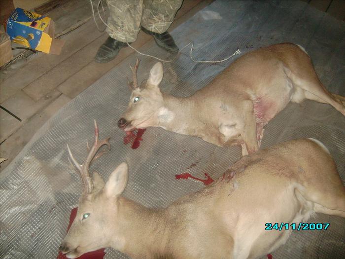 Открытие зимней охоты удалось!!! За кровь извените уж