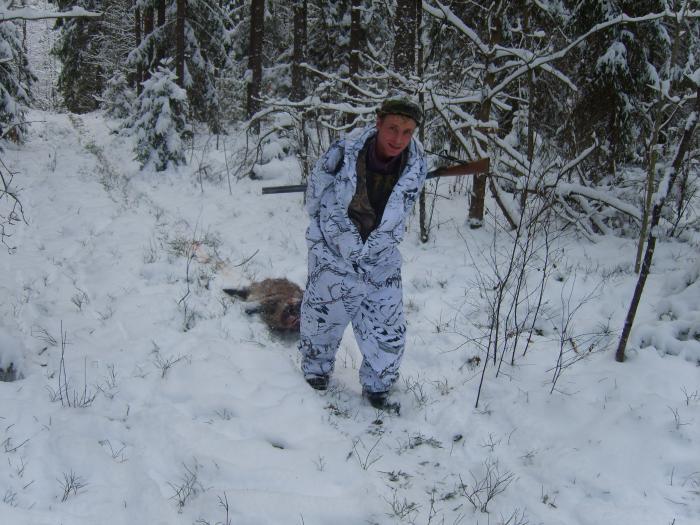 из  лесу