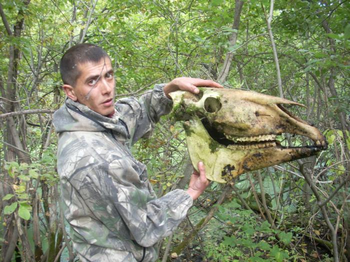 Нашли в болоте череп....