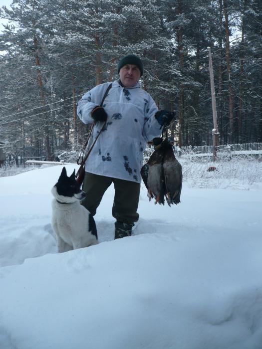 сегодня  северная пошла ))))))))))))