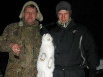 за зайцем