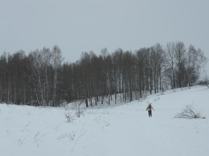 30 января,пришли на место охоты