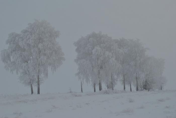 пейзаш зимы.