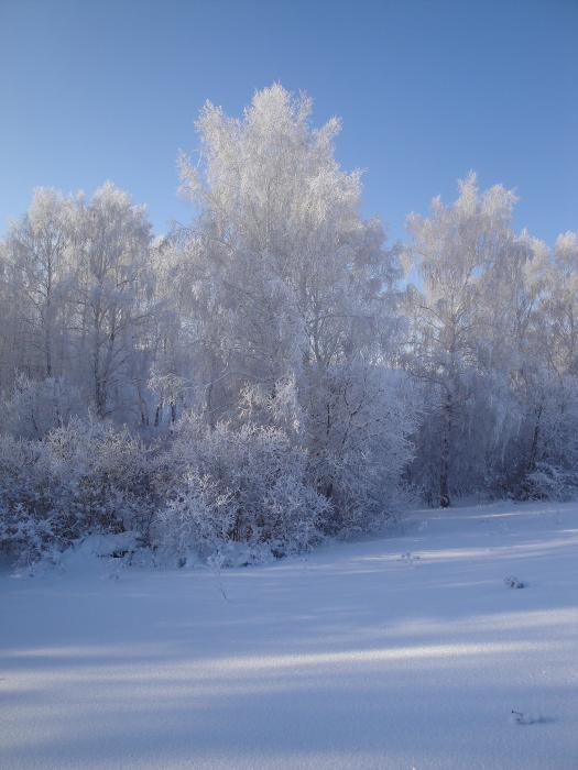 Серебрянная Сибирь