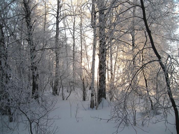 Утро морозное.