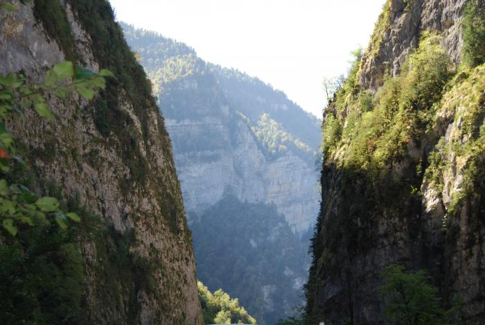 Кавказ......Абхазия.