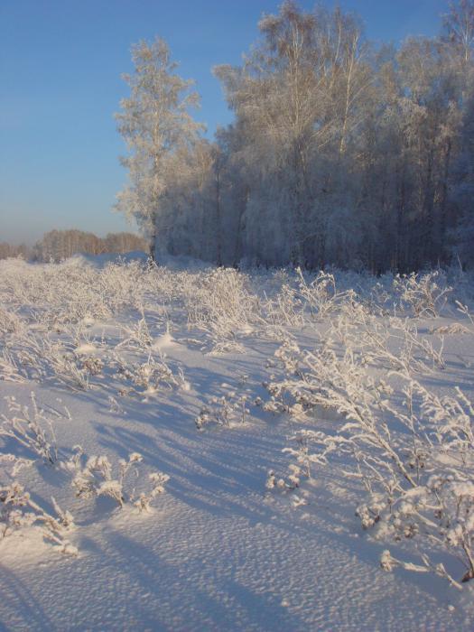 Зимние красоты.