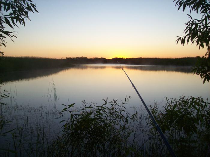 Если нет охоты мы на рыбалку