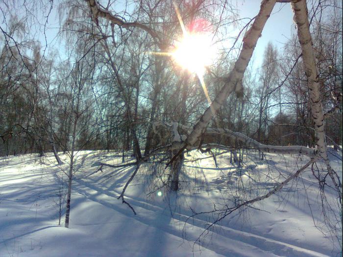 Январское солнце в горах