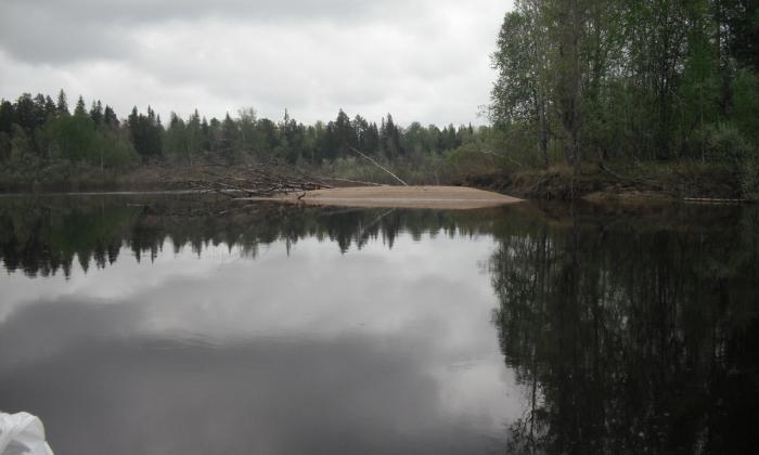 речной плёс