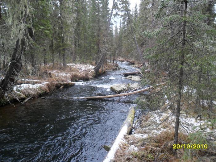 река  башкирь
