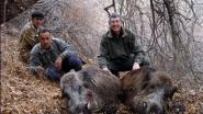 Охота на кабана в горах Таджикистана
