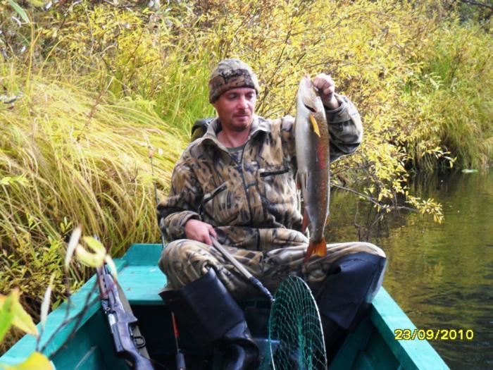 осенняя рыбалка на енисее