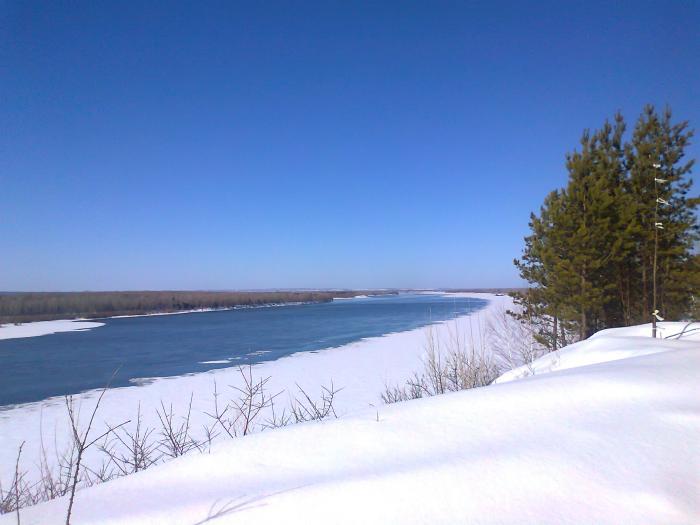 Пришла весна в Сибирь
