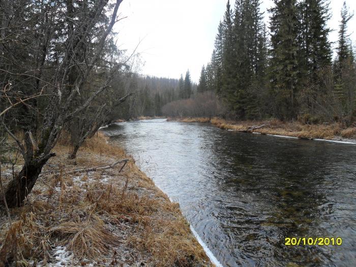 река купа